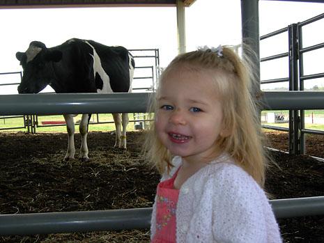 farm-cow.jpg