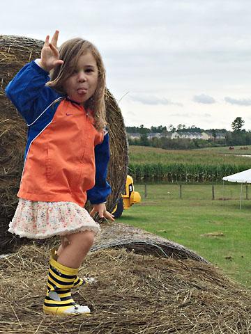 fall-m-haystack-funny-face.jpg