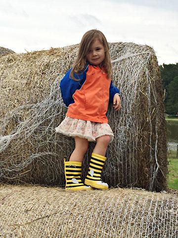 fall-m-haystack.jpg