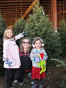 holiday pick tree