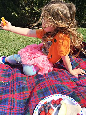 spring flower picnic